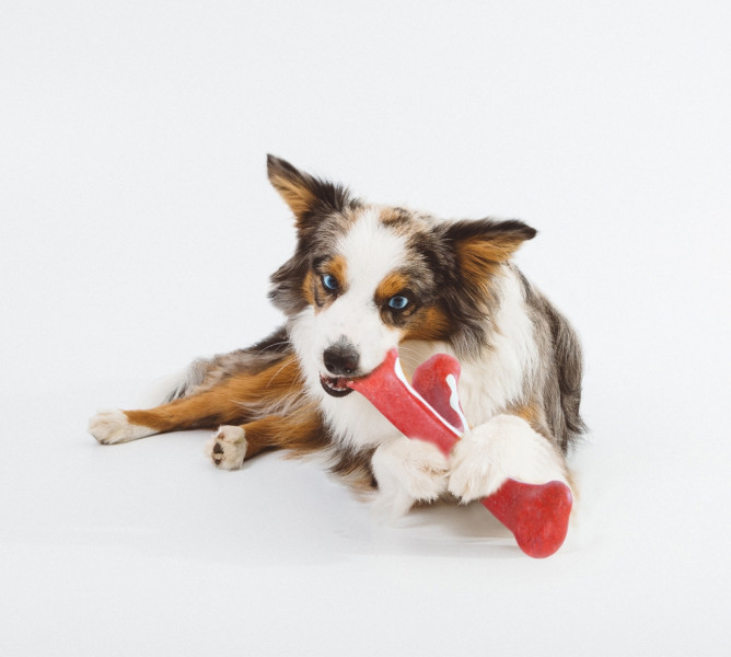Petstages Wishbone